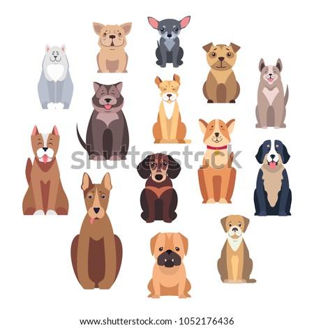 cartoon dog breeds isolated on