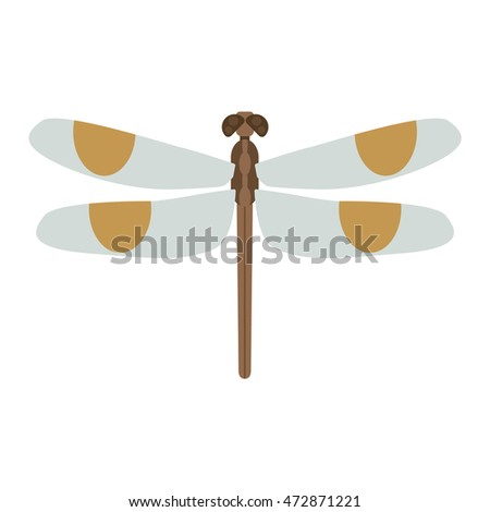 cartoon dragonfly and flat blue