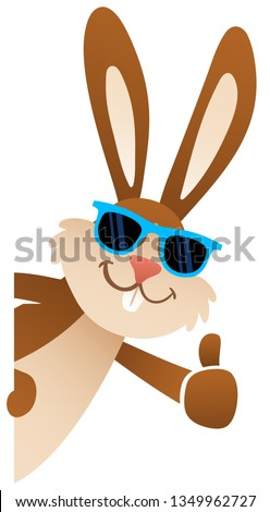 Cartoon Easter bunny giving thumbs up wearing sunglasses peeking behind blank board, lateral, upright, isolated on white background