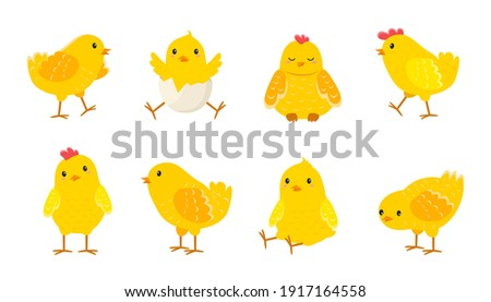 Cartoon Easter chicks. Cute baby farm birds with yellow feathers. Cheerful little chickens and roosters activities. Funny domestic animals hatched from eggs. Isolated newborn poultry, vector set Stockfoto ©