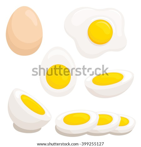 Cartoon egg isolated on white background. Set of fried, boiled, half, sliced eggs. Vector  illustration. Eggs in various forms.