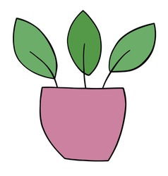Cartoon flower pot, vector illustration. Colored and black outlines.