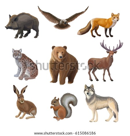 cartoon forest animals set with