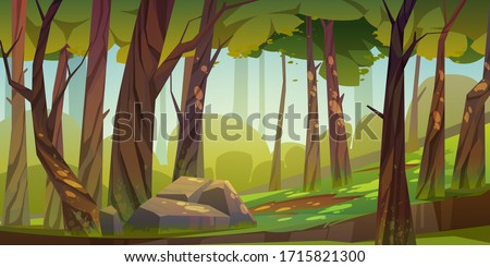 Cartoon forest background, nature landscape with deciduous trees, moss on trunks and rocks, green grass, bushes and sunlight spots on ground. Scenery view, summer or spring wood vector illustration