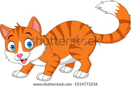cartoon funny cat isolated on