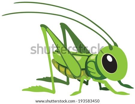 cartoon grasshopper for little