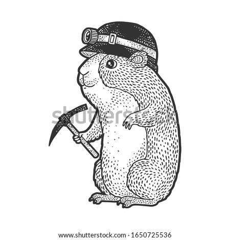 cartoon guinea pig miner sketch