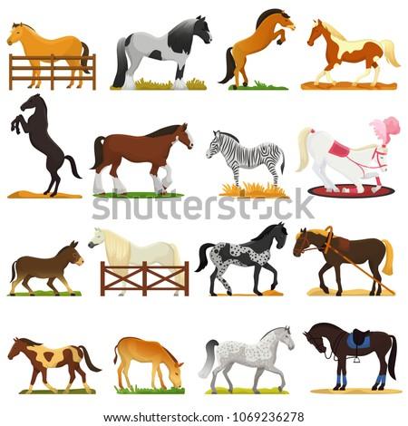 cartoon horse vector cute...