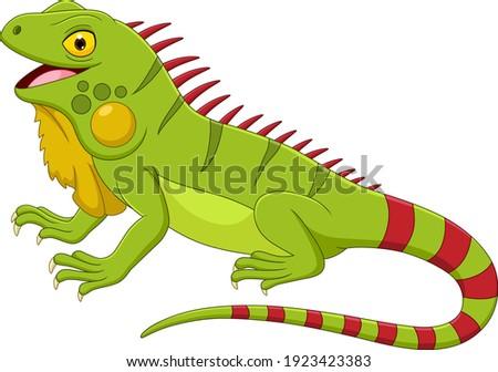 Cartoon iguana isolated on white background Zdjęcia stock ©