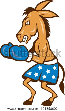 Cartoon illustration of a donkey jackass boxer with boxing gloves and stars shorts as democrat mascot celebrating victory championship.