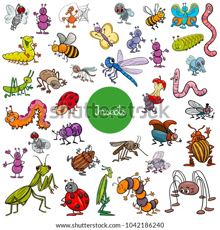 Cartoon Illustration of Insects Animal Characters Large Set
