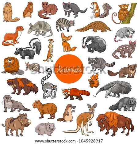 cartoon illustration of wild
