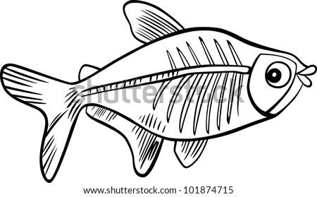 cartoon illustration of x-ray fish for coloring book