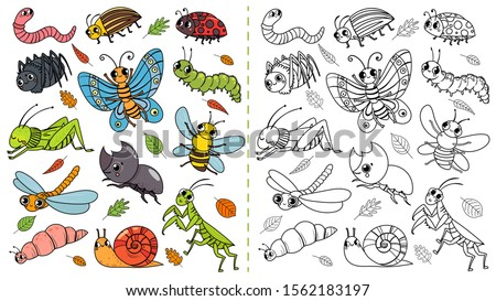Cartoon insects color painting game. Draw cute insect with kids, funny bug, worm and caterpillar. Children education beetle insects coloring painting book vector illustration