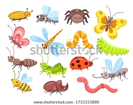 Cartoon insects. Fly bug, cute butterfly and beetle. Funny garden animals. Ant bumblebee and spider ladybug for children vector illustration