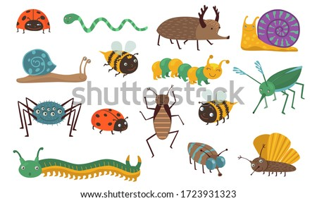cartoon insects set funny bugs