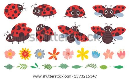 cartoon ladybug cute ladybugs