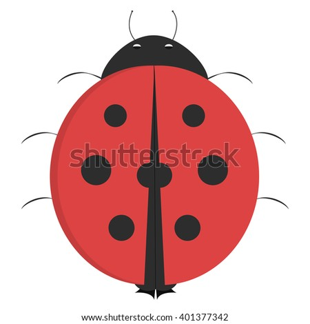 cartoon ladybug  illustrated