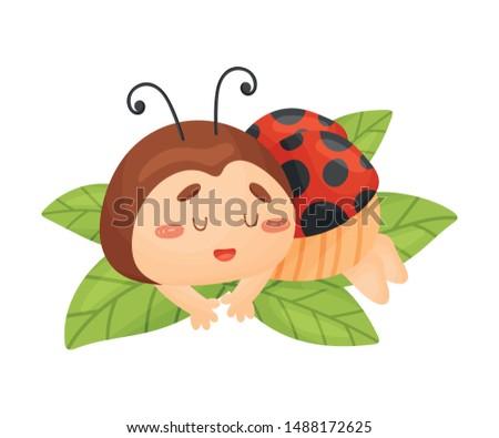 cartoon ladybug is sleeping