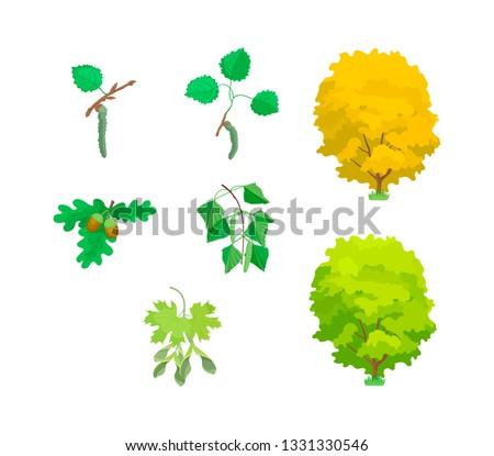 cartoon leaves of trees cute