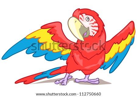 Cartoon macaw isolated on white