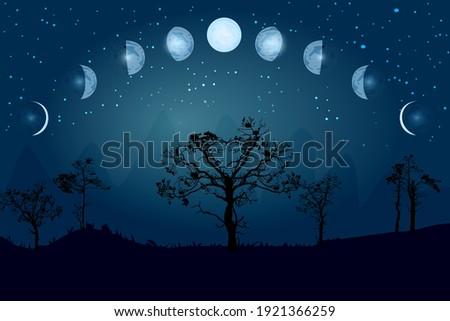 cartoon moon phases whole