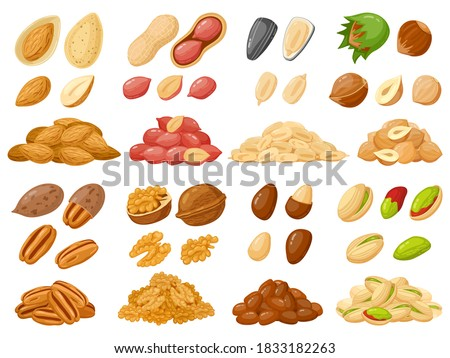 Cartoon nuts. Almond, peanut, cashew, hazelnut nuts, sunflower seed and pistachio, nut food isolated vector illustration icons set. Nuts heaps in shell on white. Organic healthy products for snack