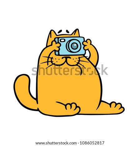 cartoon orange cat with camera