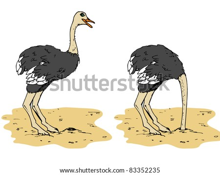 Cartoon ostrich with head below sand. Isolated on white