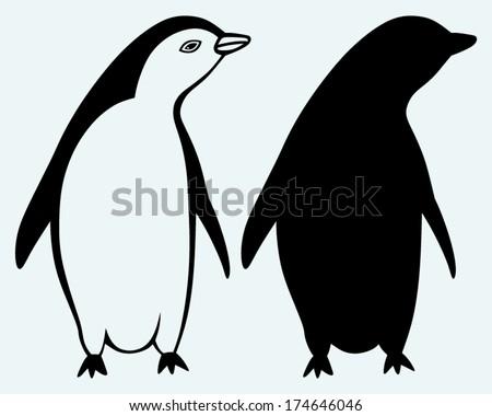 Cartoon penguin isolated on blue background