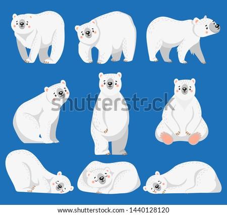 Cartoon polar bear. White bears, arctic wild animal and snow bear. Snow polar character, endangered north bears. Isolated vector illustration icons set