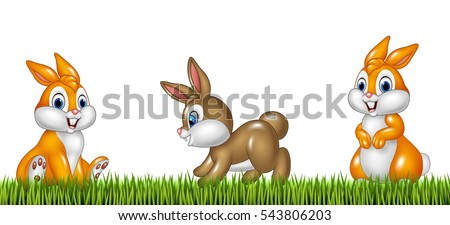 cartoon rabbits on grass