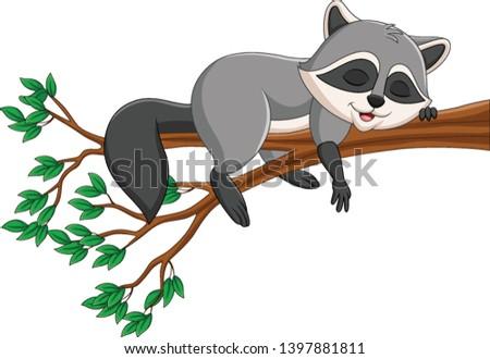 cartoon raccoon sleeping on the