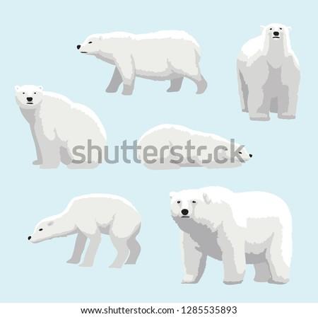 cartoon realistic style polar