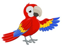Cartoon red parrot bird character pointing with its wing