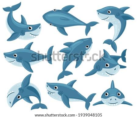 Cartoon sharks. Cute underwater shark animals, toothy fish mascot, ocean fauna character. Sharks creatures mascots vector illustration set