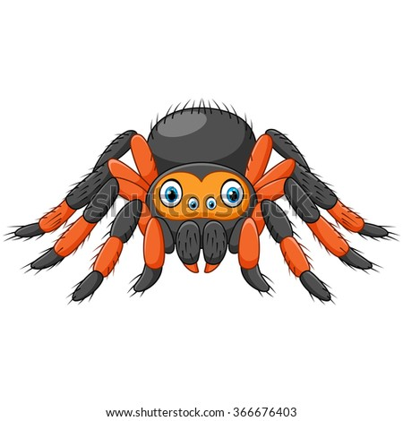 cartoon spider tarantula with