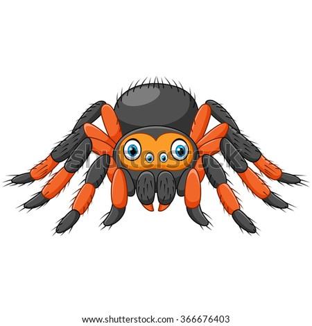 cartoon spider tarantula with