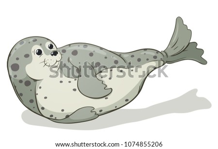 cartoon spotted seal vector image, hand-drawn illustration