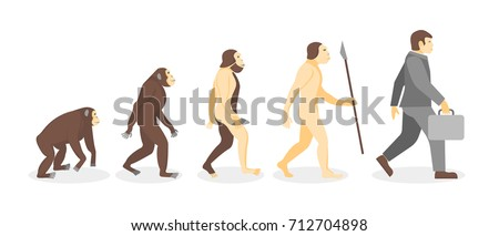 cartoon stage of human