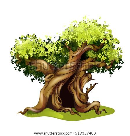 cartoon style oak illustration