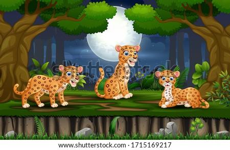 cartoon three leopard enjoying