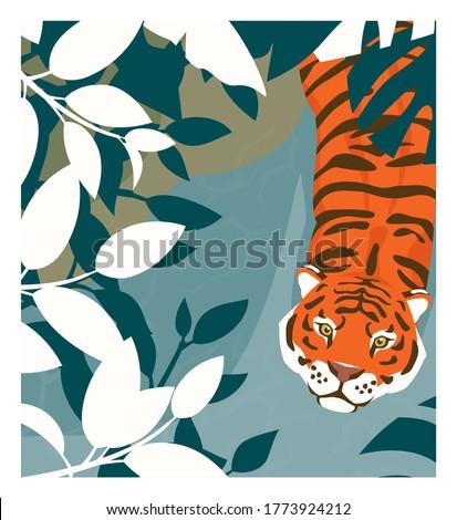 Cartoon tiger walking in a jungle, top view. Stock vector illustration. Rainforest inhabitants.