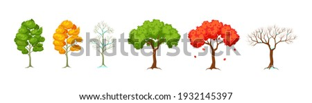 cartoon tree at different times