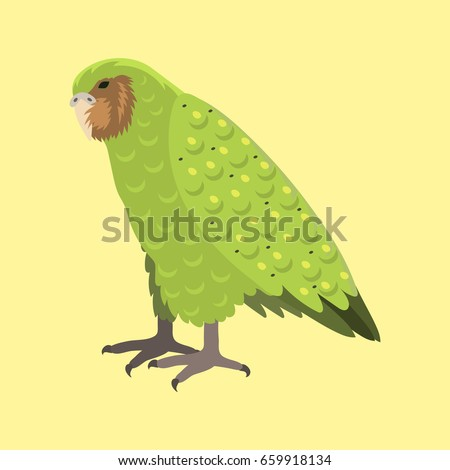 cartoon tropical kakapo parrot
