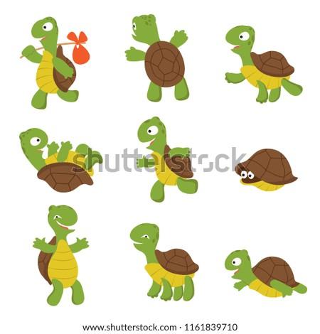 Cartoon turtle. Cute tortoise wild animal vector characters isolated. Turtle wildlife, terrapin wild and slow illustration
