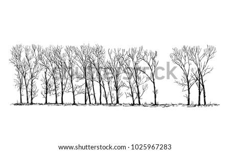 cartoon vector doodle drawing