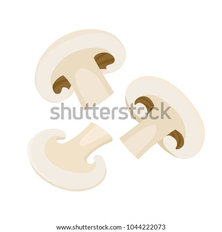 Cartoon vector icon illustration of mushroom champignon. Fresh cartoon organic mushroom isolated on white background used for magazine, book, poster, card, menu cover, web pages.