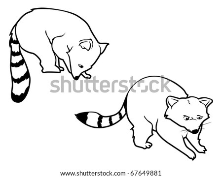 cartoon vector outline illustration of raccoons - Outline Cartoon Pictures