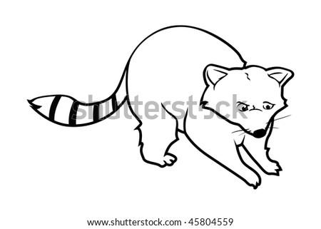 cartoon vector outline illustration raccoon - Outline Cartoon Pictures